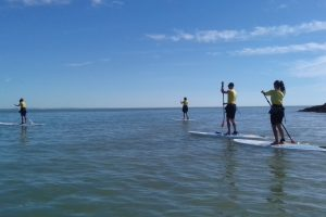 ENERGY STAND-UP PADDLE